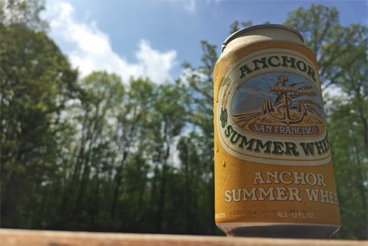 summer-wheat-can-blue-sky-c-525