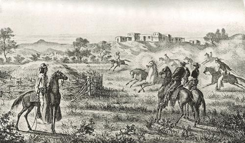 Threshing the Grain with Horses in Early California