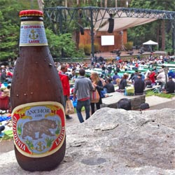 Stern-Grove-Anchor-California-Lager