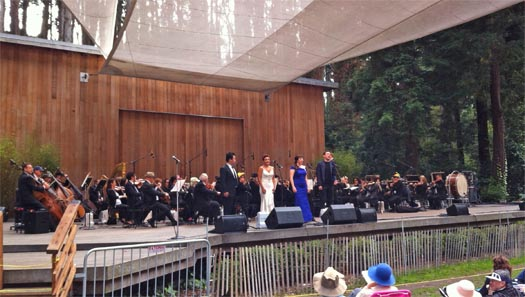 Stern-Grove-SF-Opera-cropped-525