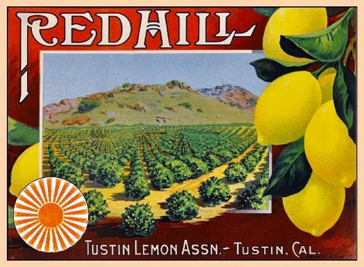 08A-Fruit-Crate-Label-Red-Hill