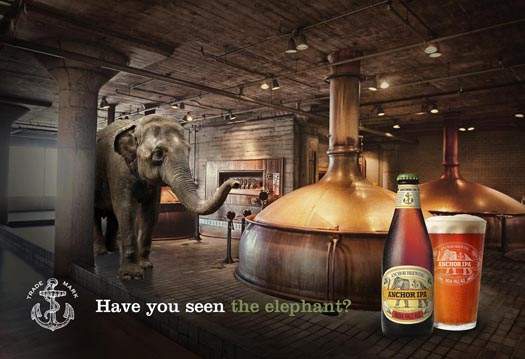 have-you-seen-the-elephant-525