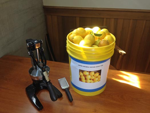 CaUncommon-Production-Fresh-Meyer-Lemons-w-uicer-and-Zester-525